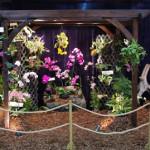 OSMT 2013 Lawn & Garden Show