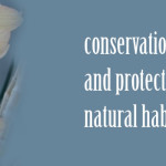 Conservation and Natural Habitat