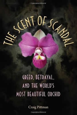 osmt_the-scent-of-scandal